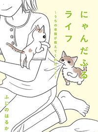 にゃんだふるライフ~うちの老猫が教えてくれたこと~
